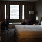 Room- Q bed