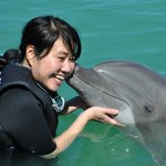 Dolphin 'kiss.'