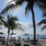 Playa Palms Beach