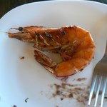 Nice large tasty shrimp