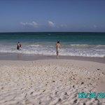 Bougainvillea Beach