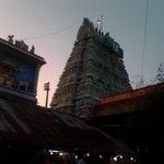 Tower view-Muralitharan photo