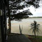 Foto de Pounawea Motor Camp