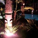 Tiki gardens by the pool
