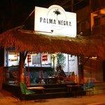 Foto de Palma Negra