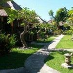Φωτογραφία: Naturale Villas