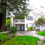 Hotel right on St Helena Main Street, yet with serenity of redwood tree and beautiful garden