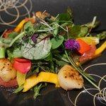 Salat - Wildkräutersalat mit Jakobsmuscheln