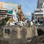 Cat statue outside Hotel Grand Margherita
