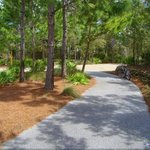 biking/running trails in front of condo