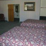 Little Bear Motel