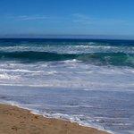 Sunny ocean view