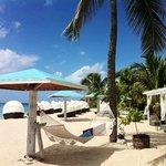 Jacqui O's BeachHouse