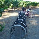 Cool bike rack at a local vineyard