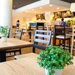 ann Café