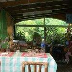 comedor con ventana al jardin