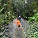 the nearby hanging bridges hike