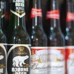 ...la birra dell'orso...ma se ne vuoi una puoi prenderla!