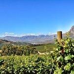 super uitzicht vanuit Clouds Estate Stellenbosch