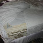 This was how housekeeping used 1/2 a sheet to make bed!