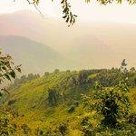 Hike to Bwindi Impenetrable Forest