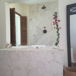 CocoNut Bathtub in Bedroom