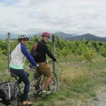 Tandem + Vines = Fun Day Out