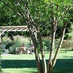 Ahhh! Garden Pergola