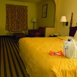 Photo de Comfort Inn Biltmore West