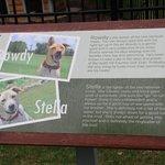 Rowdy & Stella