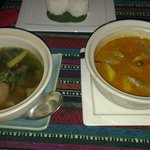 Mushroom curry and Mussaman curry