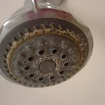 super 8 shower head not SO super