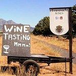Wine tasting?