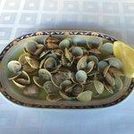 Almejas - clams