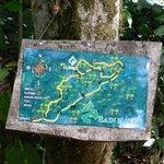 Rainmaker Trail Map