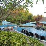 beautiful pools