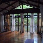 Jungle yoga at it's best