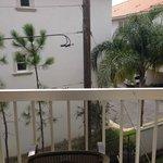 """""""garden view"""" of a pole"""
