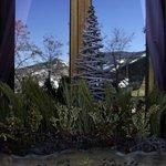 montagnes se reflétant sur les fenêtres