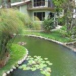 El Oasis gardens