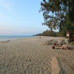 Strand vor dem Castaway