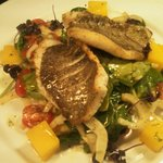 John dory special with saffron potatoes warm salad of fennel tomato and spinnach,  apple and che
