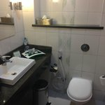Sink/toilet