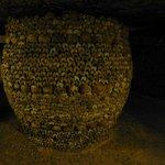 Barrel-shaped array of bones