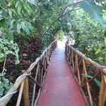 You enter the guest house by a 'jungly' bridge
