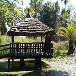 Jardin polynésien