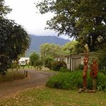Te Aroha Holiday Park and Backpackers Foto