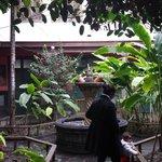 patio de casa antigua