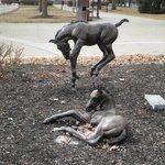 Foal statue outside