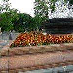 Plaza frente El Capitolio